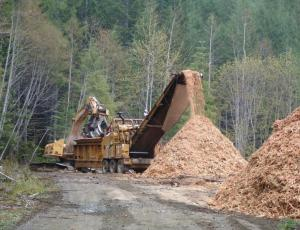 Brad Berry Enterprises LTD Grinding logging residue near Block 6. Spring 2013 Hog Fuel delivered to Pulp Mill.
